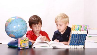 Photo of معلومات عن نظام مدارس الأطفال في السويد من عمر 1 إلى 6 سنوات