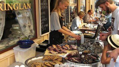 التجربة السويدية لدعم ريادة الأعمال
