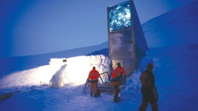 صورة المخزن العجيب في النرويج . بنك يحوي على بذور النباتات في حال حدوث كارثة للأرض