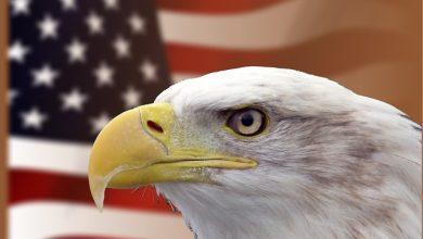 Photo of الهجرة إلى أمريكا أم أوروبا  .. لماذا قد تكون هجرتك إلى أميركا قرارًا سيئاً ؟